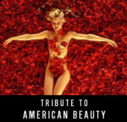 Tribute to American Beauty