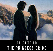 Tribute to Princess Bride